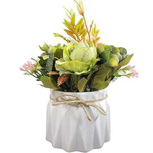 Artificial Flowers with Ceramic Vase Pot for Decoration Table Centerpieces - Faux Fake Flowers in Vase Table Centerpieces for Home Room Kitchen Decorations, Flowers Arrangements Artificial in Vase