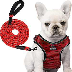 """PABOBIT Dog Harness, No Pull Dog Harness and Leash Set, Reflective Adjustable Pet Vest with 5ft Dog Leash, Soft Breathable Flying Net Dog Harnessfor Small Dogs (S Chest Girth 15.7""""-19.3"""")"""