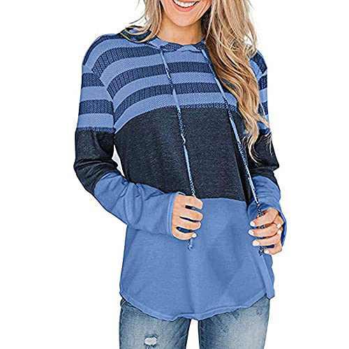 TOPIA STAR Women's Tunic Shirts Plus Size Long Sleeve Tops Fashion Pullover Sweatshirt Casual Blosues Long Shirt (Light Blue, S)