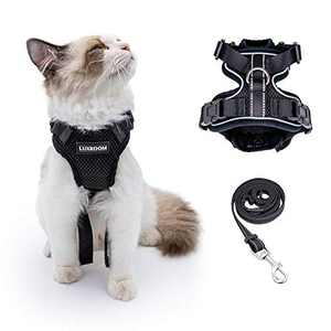 Luxroom Black Cat Harness and Leash for Walking Adjustable, Cat Halter and Leash Escape Proof, Cat Leash and Harness Set Small Dogs Rabbits XS