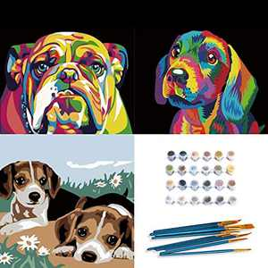 INSOUR Paint by Numbers for Adults, 3pcs DIY Canvas Painting Kits for Kids Beginners with Brushes and Acrylic Paints - 16x20 inch Colourful Dog (Without Frame)