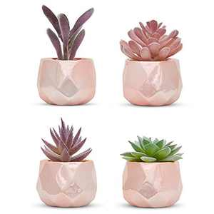 Nordik Set of 4 Desk Plants in Rose Gold for Office Desk Decor for Women, Indoor, Living Room, Bedroom and Home Decor – Pink Faux Succulents Geometric Ceramic Planters