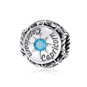 BAMOER Zodiac Star Sign 925 Sterling Silver Birthstone Charm for Charm Bracelets 12 Constellations Charms Bead Fits Pandora Bracelet and Necklace