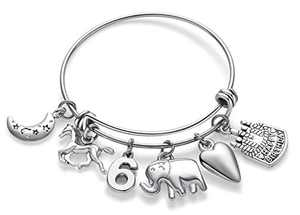Doitory 6 Year Old Girl Gifts Birthday Gifts for Teenage Girls Charm Bracelets for Women Birthday Gifts for Women Teen Girl Gifts for Friends Female Jewelry for Women