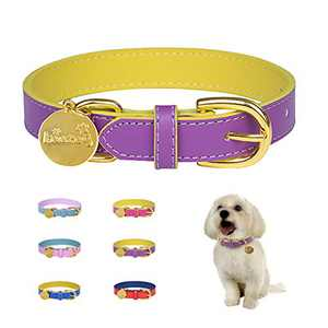 keezeg Leather Dog Collar for Small Medium Large Dogs Male and Female, Classic Adjustable & Durable Large Dog Collar with Metal Buckle Soft Collar for Girl Female Cats, Purple & Yellow ( M )