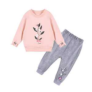 Toddler Baby Girls Outfits Cute Sweatshirt Set Long Sleeve Tops and Pants 2Pcs Clothes Set (PINK3, 2-3T)