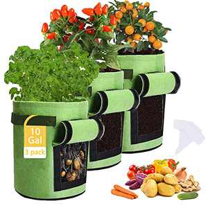 Potato Grow Bags,3 Pack 10 Gallon Felt Potatoes Growing Containers with Handles&Access Flap for Vegetables,Tomato,Carrot, Onion,Fruits,Plants Planting Planter