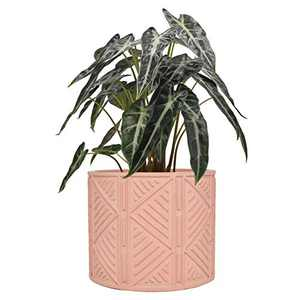 Cement Plant Flower Pot Indoor - 5.5 Inch Mordern Planter Cylinder with Drainage Hole Garden Clay Containers Unglazed, Pink