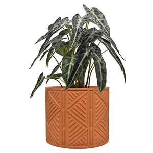 Cement Plant Flower Pot Indoor - 5.5 Inch Mordern Planter Cylinder with Drainage Hole Garden Clay Containers Unglazed, Brown