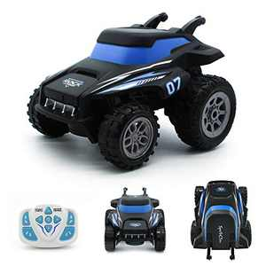 RC Stunt Cars Toys for 4-9 Year Old Boys and Girls Remote Control Car Gifts for 5 6 7 8 9 Year Old Boy by Rindol (Blue)