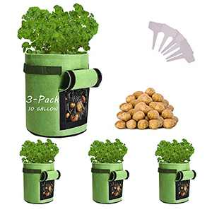 Potato-Grow-Bags, 3 Pack 10 Gallon Felt Potatoes Growing Containers with Handles&Access Flap for Vegetables,Tomato,Carrot, Onion,Fruits,Plants Planting Bag Planter (3-Pack)