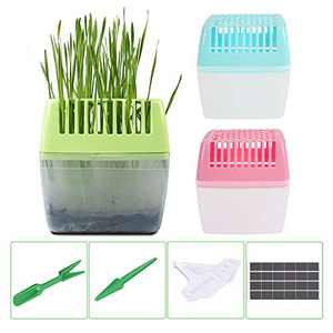 KORAM Seed Tray Kit, Seed Planting Tray for Cat Grass, Tray for Seedling Organic Pet Cat Grass Growing with Non-Slip Stickers, Natural Hairball Control Healthy Treat for Cats(Seed Not Included)