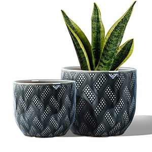 "7.4"" + 6.3"" Ceramic Flower Pots Succulent Planters with Drainage Hole and Saucer, Decorative Garden Pots for Indoor Outdoor, House Plants, Cactus, Herbs, Snake Plants, Aloe Vera"