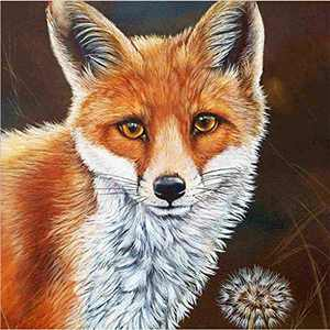 Animal Diamond Painting Kits for Adults, 5d Diamonds Art with Full Tools Accessories, Fox DIY Arts Dotz Craft for Home Décor, Ideal Gift for Family or Self Use