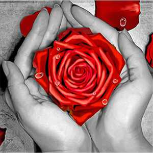 Flower Diamond Painting Kits for Adults, 5d Diamonds Art with Full Tools Accessories, Red Rose Arts Dotz Craft for Home Décor, Ideal Gift for Family or Self Use