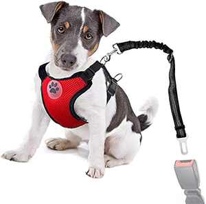 Dog Seatbelt Dog Car Harness with Pet Harness Double Breathable Mesh Fabric Vest,Adjustable Pet Seatbelt,Car Vehicle Connector Strap for Dogs and Seatbelt Extenders for Cars(Red(Classic),M)
