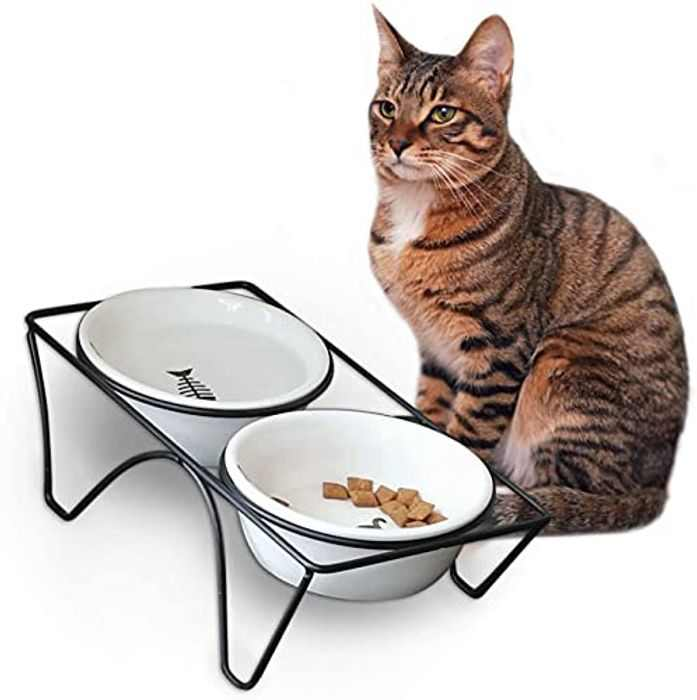 CatRomance Raised Cat Bowl, 10°Tilted Cat Food Bowl, 12oz Ceramic Pet Dishes Bowls with Stand for Indoor Cat or Small Dogs