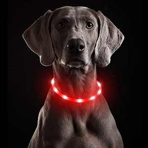 USB Rechargeable LED Dog Collar, Flashing Puppy Collar for Night Safety, Adjustable Water Resistant TPU Cuttable Dog Necklace, Basic Dog Collar for Small Medium Large Dogs (Red-Silicone)