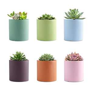 Gdamal Ceramic Small Plant Pots, 3.1 InchMorandi Color Succulent Pots with Drainage Holes, Flower Pot Container for Indoor Outdoor, Set of 6(Plants NOT Included)