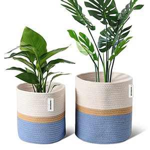"Harrage Rope Cotton Plant Basket for Flower Pot, Sturdy Woven Pots for Indoor Plants, Luxury 10"" & 12"" Inch Plant Pot with Handle, Rustic Home Decor Flowers Basket Cool Plants Set of 2 White/Jute/Blue"