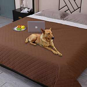 """Snagle Paw Waterproof Dog Couch Cover,Washable Puppy Pad,ReusableDog Bed Cover with Non-Slip Back,Pet Furniture Bed and Sofa Cover,Water-Resistant Pee Pads for Dogs (102""""x82"""", Coffee)"""