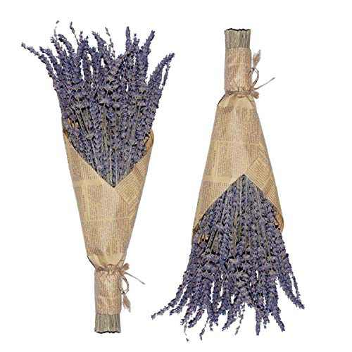Cedar Space Lavender Dried Flowers 2 Bunches Dried Lavender Shipment in USA