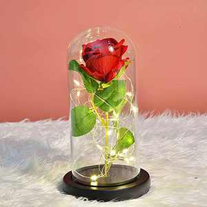 Eternal Beauty and The Beast Silk Rose, Forever Lasts Rose in Glass Dome, Preserved Flower Gifts for Women, Valentine's Day, Birthday, Anniversary (Red Silk Rose)