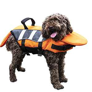 FOFRER Dog Life Jacket with Rescue Handle, Buckle Adjustable Elastic Band Excellent Buoyancy Bright Colors and Reflective Stripes for Dog Safety (Medium)
