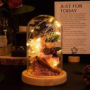 MACTING Enchanted Rose, Beauty and The Beast Rose in Glass Dome with LED Light, Best Romantic Gifts for Valentine's day Mother's Day Wedding Anniversary Birthday (Pink)