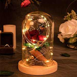 MACTING Enchanted Rose, Beauty and The Beast Rose in Glass Dome with LED Light, Best Romantic Gifts for Valentine's day Mother's Day Wedding Anniversary Birthday (Red)