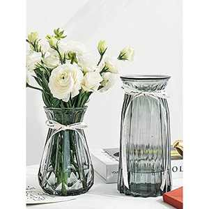 XILEI Glass Vases for Flowers,Grey Bud Vase Set of 2 ,Flower Vase Decorative for Home Decor, Desk Placement and Gift (A2)