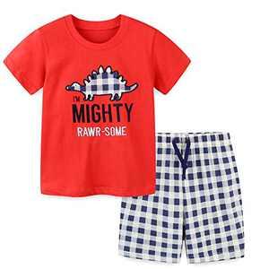 Boys Short Sets Summer Outfits Cotton Casual Crewneck Red Dinosaur Short Tee Shirt Plaid Shorts Beach Clothes Sets 5T