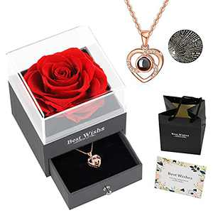 Preserved Real Rose with Love You Necklace in 100 Languages Gift Set, Gifts for Women, Valentine's Day, Mother's Day,Anniversary, Birthday, Wedding,Flower, Roses,Love (A Red)