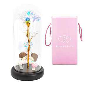 Artificial Immortal Roses with Colored Gold foil, twined and Glowing Decorations are Stringed Inside The Transparent Glass Cover. It is The for Girlfriends, Valentine's Day and Birthdays.