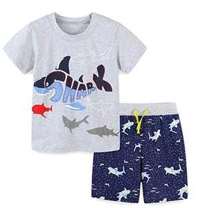 Boys Short Sets Summer Outfits Cotton Casual Crewneck Grey Fish Short Tee Shirt Knite Shorts Beach Clothes Sets 4T