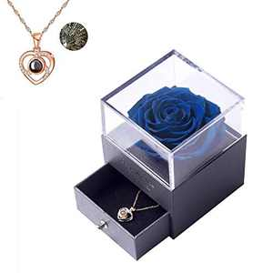 Preserved Real Rose with Love You Necklace in 100 Languages Gift Set, Gifts for Women, Valentine's Day, Mother's Day,Anniversary, Birthday, Wedding,Flower, Roses,Love (C Blue)