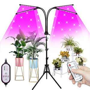 FullightGrow 4-Head Smart Red and Blue Sunlike Spectrum Lights for Indoor Plants, Adjustable Tripod Stand & Gooseneck and Remote Control, 4/8/12H Timer for Seedling, 2 Years Warranty