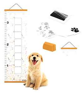 bricobe Paw Print Stamp Pad with Chart - A Dog Paw Print Kit with Puppy Growth Chart, Pet Safe Ink Pads to Make Memories, Celebrate Pet Birthday, Dog Gotcha Day and More, New Puppy Essentials (Pink)