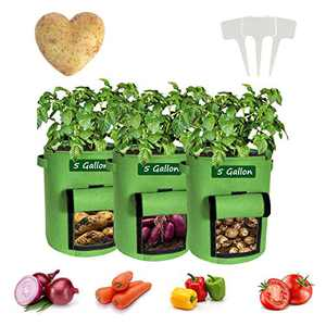 Potato Grow Bags, 3 Pack Heavy-Duty Plant Grow Bag with Dual Handles and Velcro Window Ideal, Garden Vegetable Planter for Tomato, Carrot, Onion, Fruits, and Vegetables(5 Gallon)