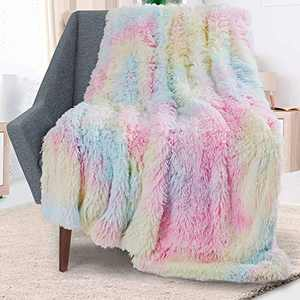 Rainlin Royal Faux Fur Throw Blankets for Sofa Chair Couch and Bed Large Super Soft Warm Elegant Cozy Home Throw Blanket Fuzzy Plush Velvet Blanket(Multicolor,63x79 inch)