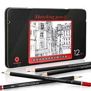 Sketching Pencils, EooUooIP 12pcs Professional Drawing Pencils Sketch Pencil Set 8B -2H,Art Pencil Perfect for Artist,Beginner,Student,Designer