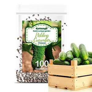 WOHOUS Pickling Cucumber Calypso Seeds, 100+ Heirloom Vegetable Seeds Organic Cucumber Seeds, Pickling Cucumber 100% Non-GMO Seeds