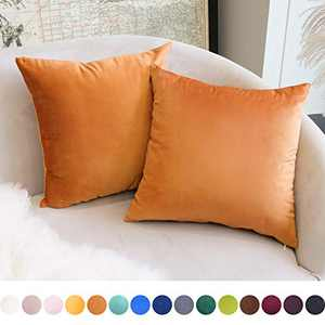 DUVAGE ThrowPillowCovers 18 x 18 in Decorative Pillow Covers, Square Velvet Throw Pillow Cases for Couch, Sofa Home Decorations Cushion Covers for Bedroom Living Room Car, Pack of 2 Orange