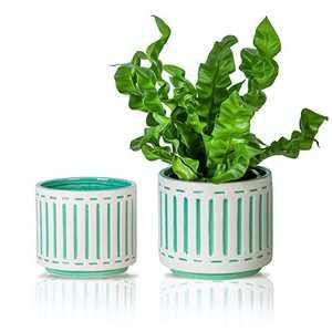 "HERDUK Plant Pots Indoor, 5.9"" + 4.7"" Flower Pots Indoor, Ceramic Planter, Ceramic Pots for Plants, Suitable for Snake Plants , Ferns & Sunflower. Pack of 2 – Plants Not Included"