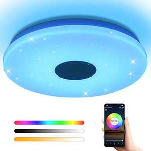 OFFDARKS Flush Mount Smart Led Ceiling Light,Support WiFi Alexa Google Assistant, Adjustable Brightness 28W Ceiling Light,Dimmable RGB Color Temperature Light Fixture for Bedroom Bathroom Living Room