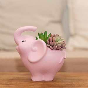 Pink Elephant Succulents Plant Pot with Drainage Hole,Artconal Animal Planting Table,Home Decor Accent,Adorable Design, Resin Planter,No Plant