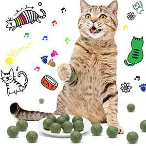 Tallew 24 Pieces Catnip Toys for Indoor Cats Compressed Catnip Ball Toys Interactive Cat Catnip Balls Catnip Cat Toys Catnip Chewing Balls Edible Licking Balls for Cats Kittens