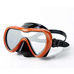 Rongbenyuan Swimming Mask Goggles with Nose Cover Diving Scuba Snorkel Mask Dry Top Snorkel Set Kids Youth Adult