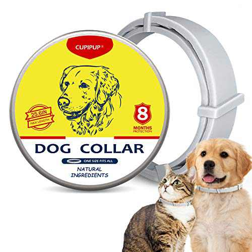 CUPIPUP Collar for Dogs & Cats, 100% Natural Ingredient,8-Month Prevention,