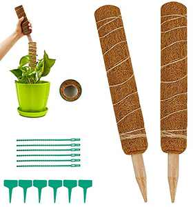 tiwajnpox 24 Inch Moss Pole - 2 Coco Coir Poles - Use Plant Support Poles Individually or Together, with 6 Zip Ties & 6 Labels Support Indoor Plants to Grow Upwards